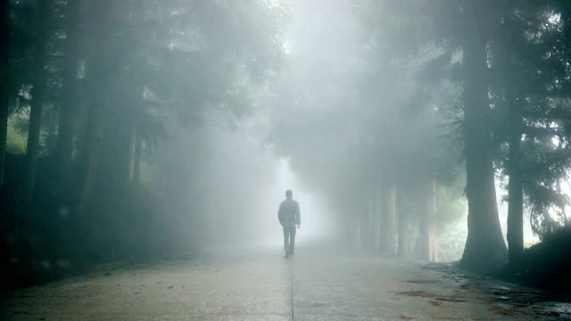 man walking alone on foggy road - rear view stock videos & royalty-free footage