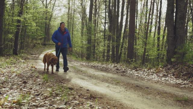 man walking dog - dog walking stock videos & royalty-free footage