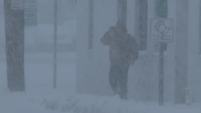 stockvideo's en b-roll-footage met man walking in a blizzard, whiteout conditions, heavy snow - nor'easter - sneeuwstorm