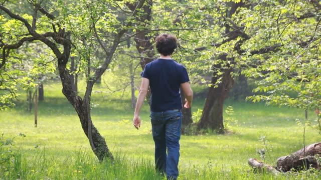 vídeos y material grabado en eventos de stock de hombre caminando en un prado de primavera - sólo hombres jóvenes