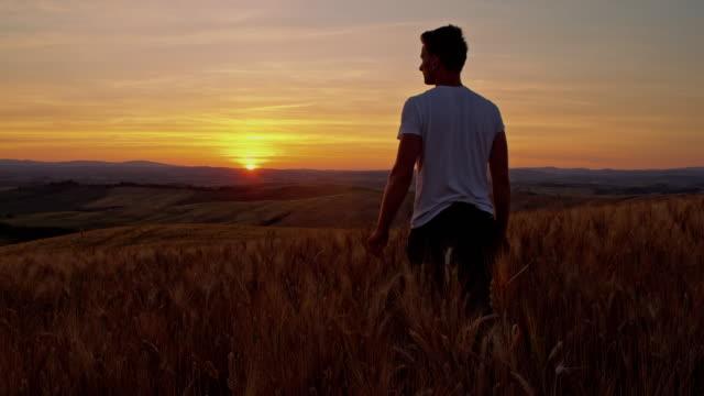 vidéos et rushes de homme marchant dans le champ de blé au coucher du soleil - crépuscule