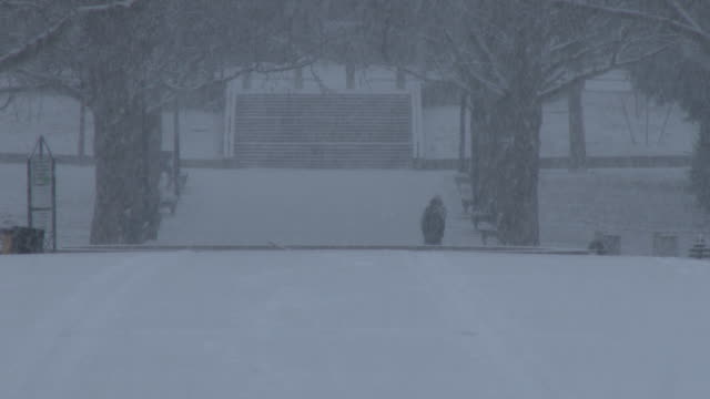 vídeos de stock, filmes e b-roll de man walking in heavy snow, nyc snowstorm - flushing meadows corona park