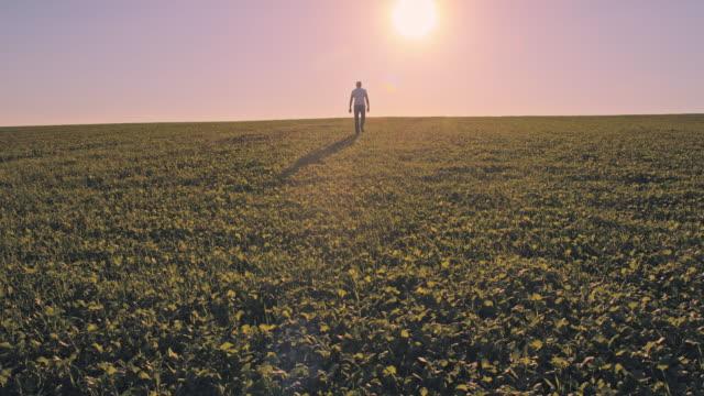 ws man walking in horizon - vanishing point stock videos & royalty-free footage