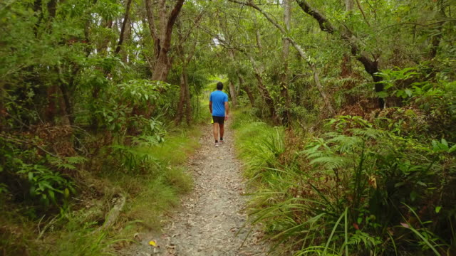 man walking in the forest, at huskisson, jervis bay, australia. - 35 39 jahre stock-videos und b-roll-filmmaterial