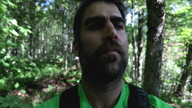 pov of man walking in the forest in summer - following stock videos & royalty-free footage
