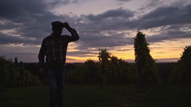 Mann zu Fuß in die Weinberge in der Dämmerung
