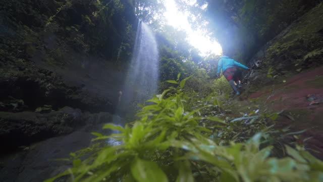 vídeos de stock e filmes b-roll de slo mo ms la man walking near los tilos waterfall in forest / canary islands, spain - pureza