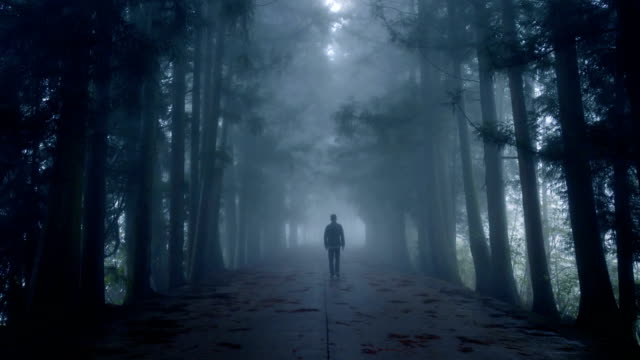 man walking on foggy road - lost stock videos & royalty-free footage