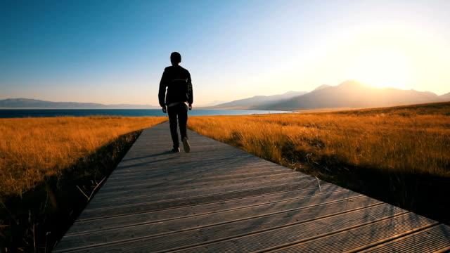 man walking on grassland boardwalk in autumn - pedestrian walkway stock videos & royalty-free footage