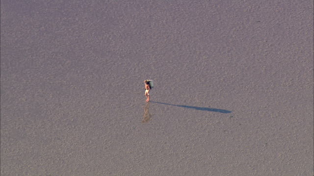 aerial ms man walking on mudflats / suederoog, schleswig-holstein, germany - nackter oberkörper stock-videos und b-roll-filmmaterial