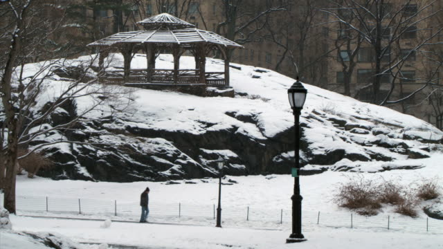 ws man walking on path in central park during winter / new york city, new york, usa - gazebo stock videos & royalty-free footage