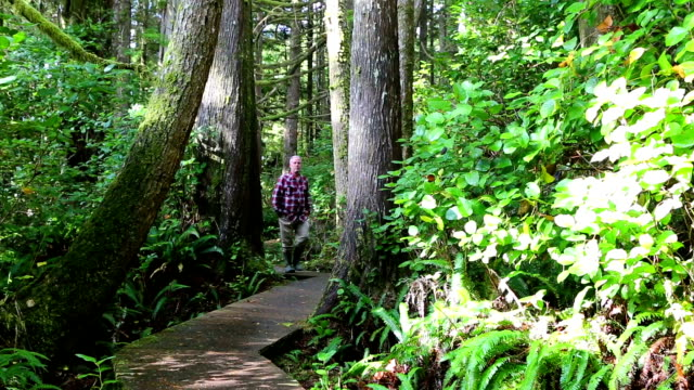 Man Walking Pacific Rim National Park Reserve Vancouver Island