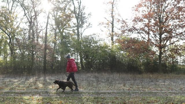 stockvideo's en b-roll-footage met man walking pet dog in countryside - ski jack