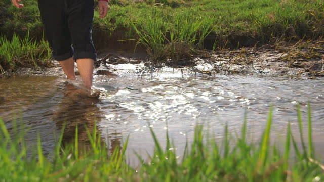 man walking through a creek, close of  legs, water and lawn - nedtoning bildbanksvideor och videomaterial från bakom kulisserna