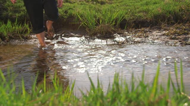 vídeos y material grabado en eventos de stock de man walking through a creek, close of  legs, water and lawn - fundido en negro