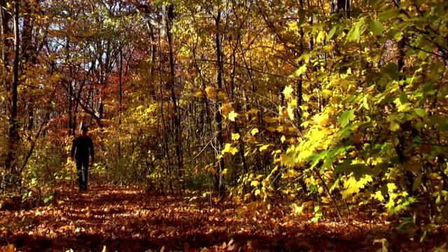 Man Walking Through Autumn Woods in Michigan