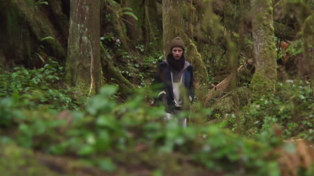 ws slo mo man walking through forest / vancouver, british colombia, canada - solo uomini giovani video stock e b–roll