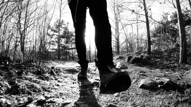 man walking through forest - grayscale stock videos and b-roll footage