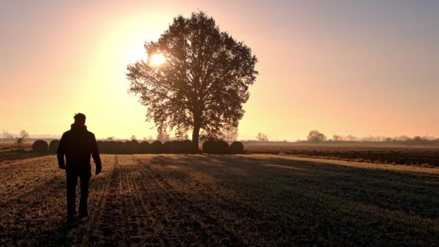 WS Man walking aan een boom in de verte