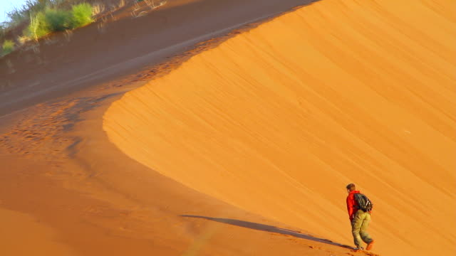 ms man walking up on kulala dunes / sossusvlei, hardap, namibi - wiese stock videos & royalty-free footage