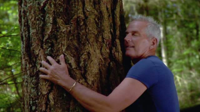 Man walking up to large tree / looking up tree trunk and hugging tree