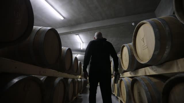 vídeos de stock, filmes e b-roll de adega de vinho de passeio do homem completamente de barris de madeira - barril