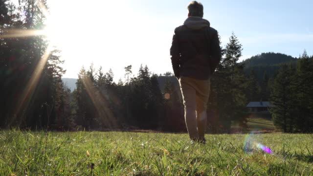 森の家に向かってグリーン フィールドを歩く男 - 孤独点の映像素材/bロール