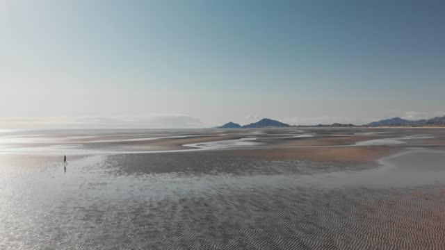 man walks alone on wide beach - baja california peninsula stock videos & royalty-free footage