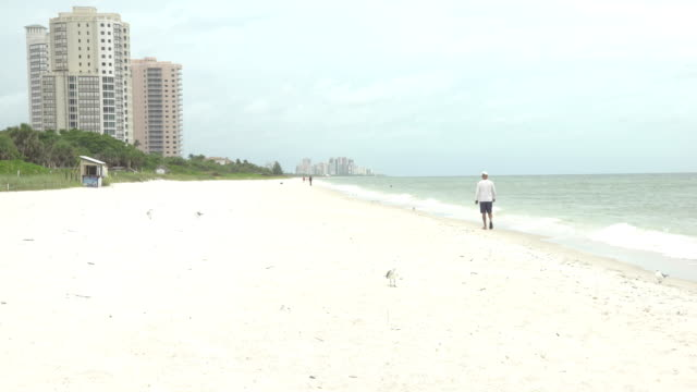 man walks along beach in naples, florida the day before hurricane irma hits - naples florida stock videos & royalty-free footage