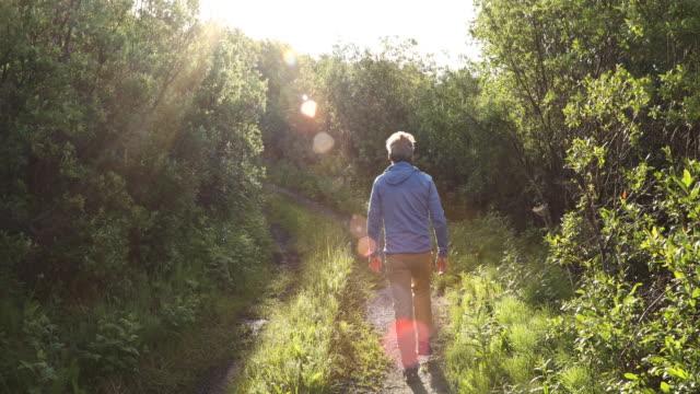 vídeos de stock, filmes e b-roll de man walks along rural track at sunrise - cena não urbana