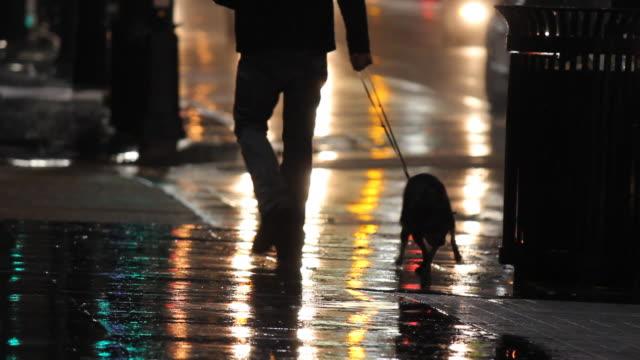 Man Walks Dog Down A Street