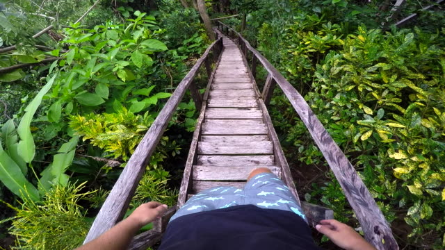 POV Man Walks Down Wooden Jungle Stairs