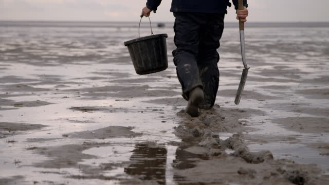 man walks onto estuary carrying bucket and spade - bay of water stock videos & royalty-free footage