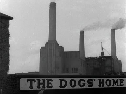 a man walks past a sign for battersea dogs' home - バタシー発電所点の映像素材/bロール