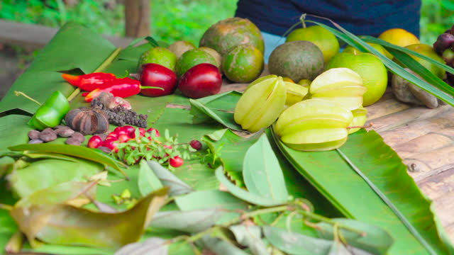 man walks up to table spread with a variety of diverse fruits berries and leaves - amazon, ecuador - ecuadorian ethnicity stock videos & royalty-free footage