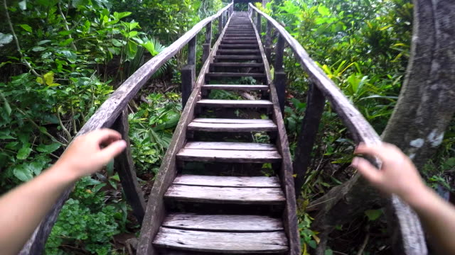 POV Man Walks Up Wooden Jungle Stairs