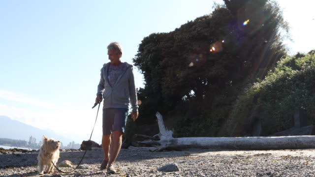 Man walks Yorkshire terrier dog along beach, ocean edge