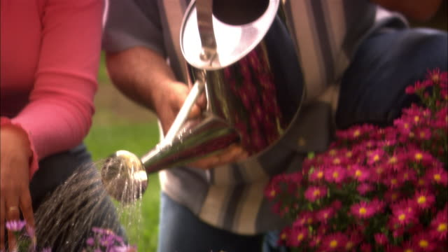 man watering flowers with watering can / woman and man kissing on mouth - ausgusstülle stock-videos und b-roll-filmmaterial