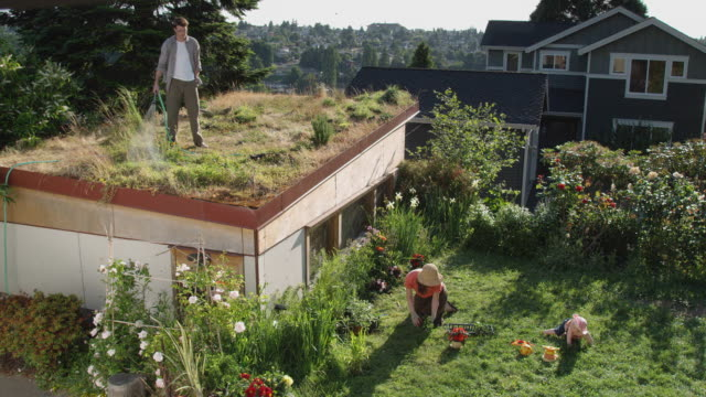 HA WS Man watering plants on green roof while woman and baby play in garden below / Seattle, Washington, USA