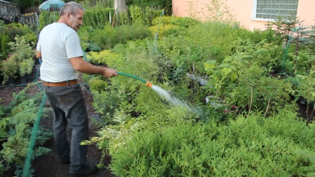 man watering shrubs on a farm producing ornamental plants is seen in sypniewo poland on 9 august 2019 at the end of july 2019 the polish geological... - groundwater stock videos and b-roll footage