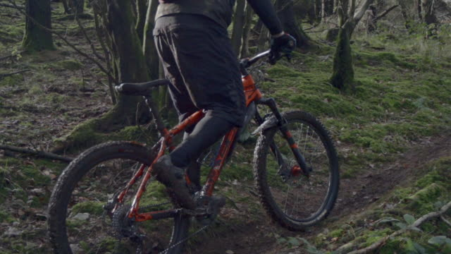 a man wearing a backpack goes mountain biking in the woods. - mountainbike bildbanksvideor och videomaterial från bakom kulisserna