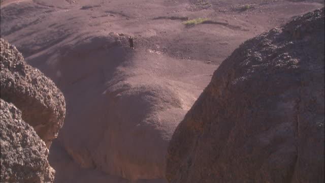 a man wearing a long tunic walks across barren desert rock. - tunic stock videos & royalty-free footage