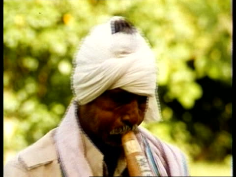 vidéos et rushes de cu man wearing turban playing musical instrument, charming snake - coiffe traditionnelle