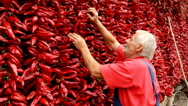 man with a peppers string - drying stock videos & royalty-free footage