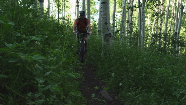 MS PAN Man with artificial limb riding mountain bike on forest trail / American Fork Canyon, Utah, USA