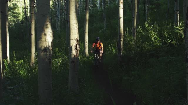 ws pan man with artificial limb riding mountain bike on forest trail / american fork canyon, utah, usa - american fork canyon点の映像素材/bロール