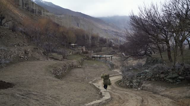 man with bale of hay walking in the village of northern pakistn - mountain peak stock videos & royalty-free footage