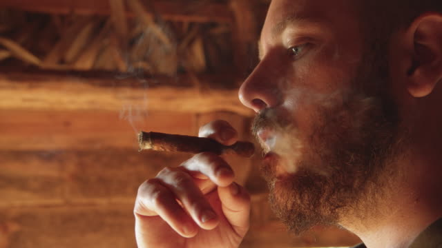 cu man with beard smoking cuban cigar inside a tobacco drying hut. viñales valley, cuba - revolution stock videos & royalty-free footage