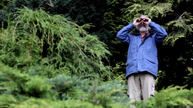 man with binoculars - bird watching stock videos & royalty-free footage