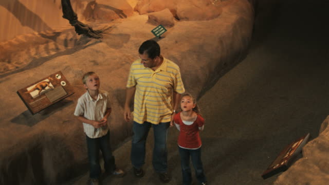 ms ha man with daughter (8-9) and son (10-11) in natural history museum, dinosaur's teeth in foreground, lehi, utah, usa - lehi stock videos & royalty-free footage